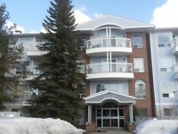 FULLY FURNISHED 1 BEDROM CONDO NEAR NORTHGATE