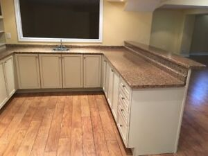 Kitchen Cabinets with Bar Reck For Sale