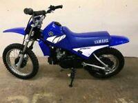 Yamaha PW80 (immaculate)
