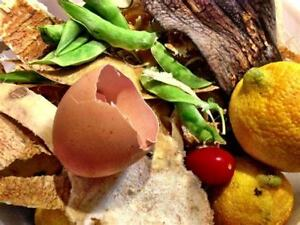 Free Food Scraps to add to your compost!!!