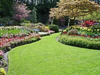 Spring Property Clean Up and Landscaping, Its Time!