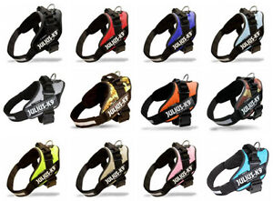 Dog Harnesses - Easy to fit and adjustable harnesses - Julius K9 Downtown-West End Greater Vancouver Area image 4