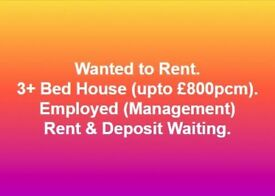 3+ Bed House Wanted to Rent