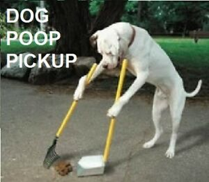 Dog Poop Pickup / Poop Scoop / Yard Cleanup Service - GP & Area