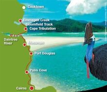 Road trip daintree / cooktown Mackay 4740 Mackay City Preview