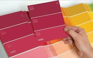 peinture rouge/ jaune latex acrylique de marque Rona, Sico