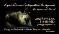 MASSAGE and so much more! For all companion animals-Horses, Dogs