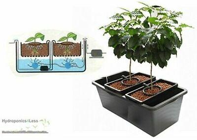 Brummie Bubbler Kit DWC Drip System Huge Plant 80L 16.5L Pot x 2 Hydroponic