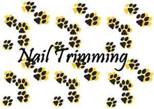Someone to trim our pets nails