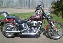 Harley Softail Custom 2007. Must sell. $13900 Ono Caboolture Caboolture Area Preview