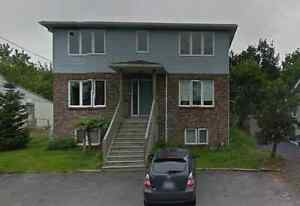 Large 3 Bedroom Home $1150/mth