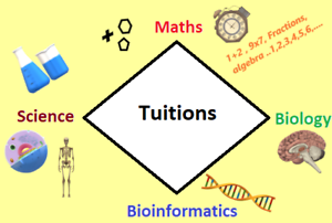 Tuition - Year 1 to Year 12  [Maths/Science/Biology] Coorparoo Brisbane South East Preview