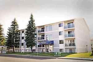 Offering One Bedroom Apartment in Millwoods @$895&Dec Free