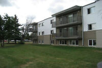 Nicely renovated 1 Bedroom unit at 14420, 88A Street