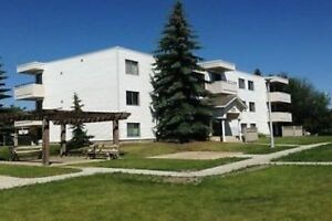 TWO BEDROOM APARTMENT IS  AVAILABLE IN MILLWOODS 780-236-0421
