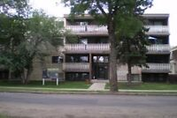 2 Bedroom Suite adult only just off Whyte!!
