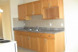 One bedroom apartment for rent in Downtown