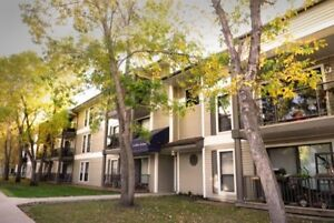 Nov & Dec Half Rent! Renovated Southwest  2 Bedroom Apartment