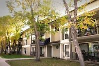 Large 3 Bedroom Apt For November 1st In Southwest Edmonton