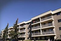 Large one bedroom Available in millwoods at great location