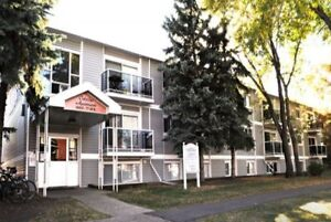 1BdR/4th floor/ Reno/Sept.Free@ 10018 83ave. Close to UofA