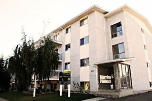 1bedroom apartment- family building-Millwoods-Deal!!!!