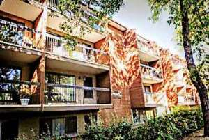 1-bed-room /Telu Prom./Reno @11012 82 Ave. very near by U of A