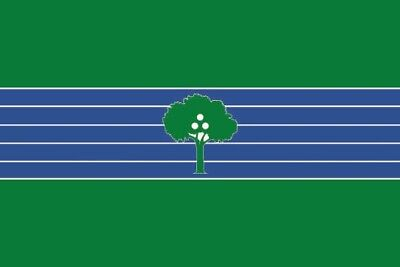 Fahne Flagge Abrera (Spanien) 20 x 30 cm Bootsflagge Premiumqualität