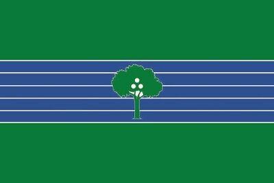 Fahne Flagge Abrera (Spanien) 30 x 45 cm Bootsflagge Premiumqualität