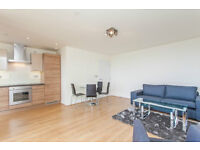 Luxury 1 bed THE PANORAMIC POPLAR E14 *ROOF TERRACE* CANARY WHARF BOW LANGDON PARK ALL SAINTS