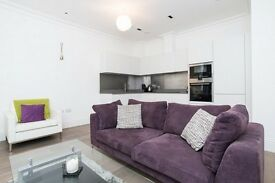 **Gorgeous Large One Bed Apartment, Tower Hill, Zone 1, London, Balcony Views, Available Now!!**