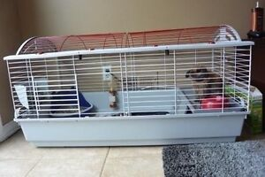 (WANTED): Living world XL cage