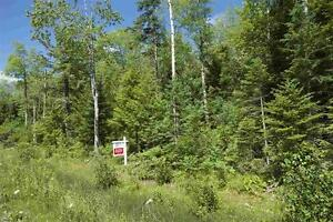 BUILD YOUR DREAM HOME ON THIS DREAM LOT