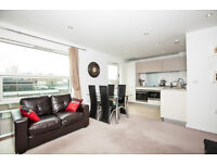 Stunning 2 bed 2 bath THORN APARTMENTS MILE END E3 BOW STEPNEY DEVONS ROAD LANGDON PARK CANARY