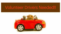 Rescue Drivers Needed for Small Animals