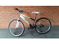 Men's Avigo Mountain Bike