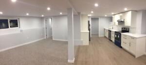1 Bedroom plus den basement suite