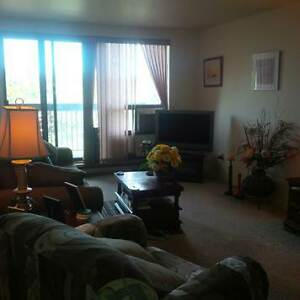 Buy your Student a Condo/Investment Opportunity Kingston Kingston Area image 4