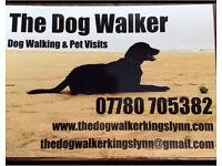 Dog walking • Pet visits • Boarding
