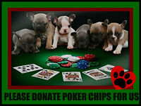 POKER CHIPS SETS NEEDED FOR DOG RESCUE FUNDRAISER
