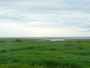 LOTS FOR SALE - Quiet subdivision with view of Shediac Bay