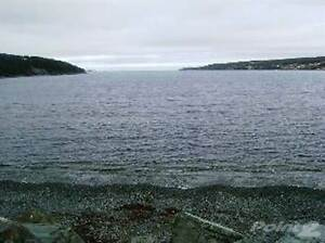 145 Conception Bay HWY St. John's Newfoundland image 2