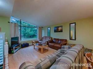 333 Rockland Road Campbell River Comox Valley Area image 5