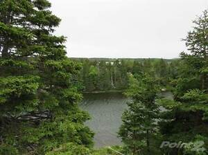 88-90 Riverside Avenue St. John's Newfoundland image 2