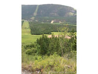 21 Acres, Salmon Arm, Located in Salmon River Valley