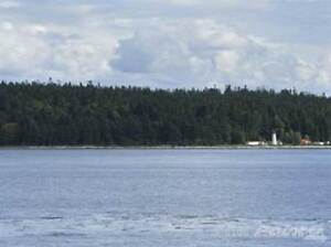 350 Island S Hwy Campbell River Comox Valley Area image 7