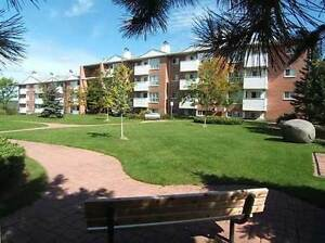 Looking for a 2 or 3 Bdrm Condo on Bell Farm in Barrie