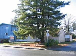 222 Birch Street Campbell River Comox Valley Area image 3