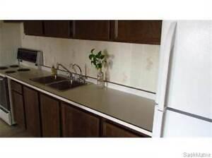 #307 - 4045 RAE STREET Regina Regina Area image 3
