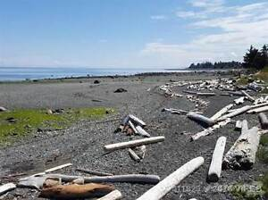 1590 Island S Hwy Campbell River Comox Valley Area image 5